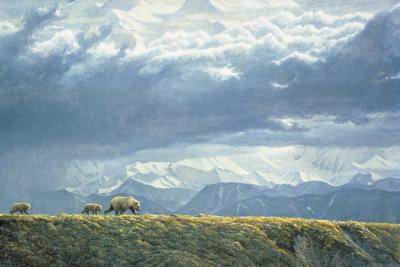 Along the Ridge - Grizzly Bears